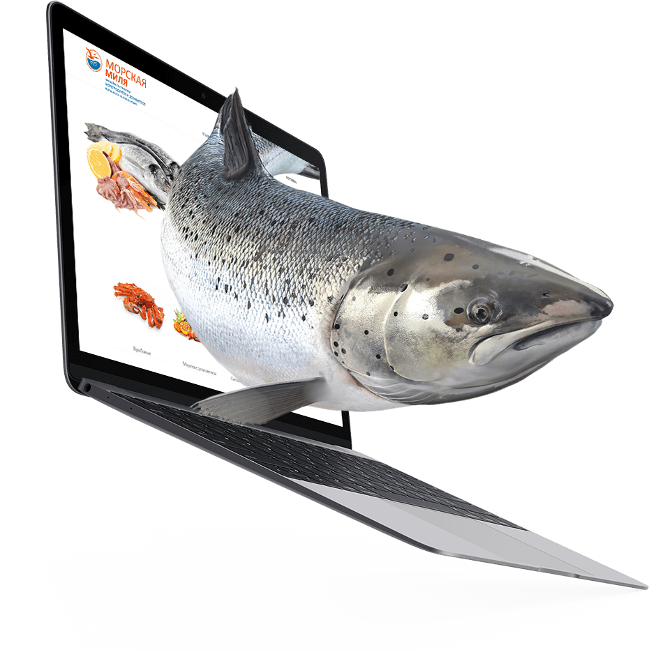 meatnfish.ru
